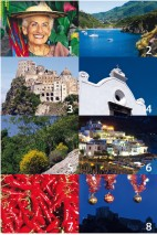 Collection 2010 of Ischia News ed Eventi Magazine