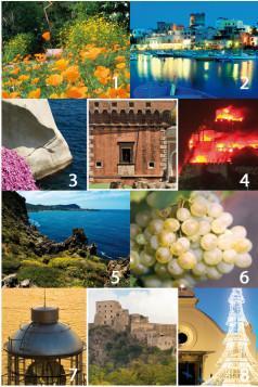 Collezione 2011 del Magazine di Ischia News ed Eventi