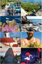 Collection 2013 of Ischia News ed Eventi Magazine